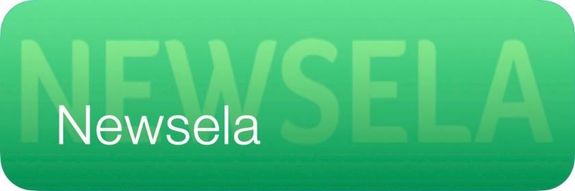 Newsela Button G